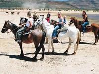 Horseback Safari Day Tour | Cape Town Safari Day Trip | www.aquilasafari.com