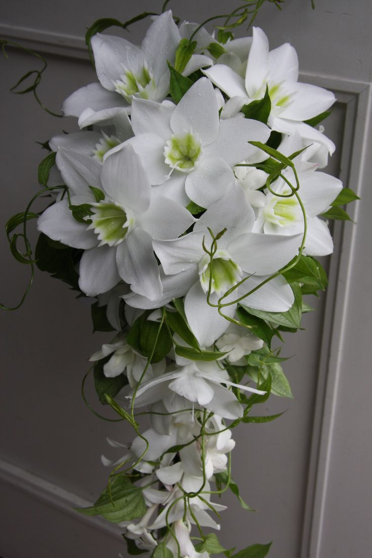 icewhite eucharis, stephanotis, jasmine trailing bouquet design, beautiful, love eucharis