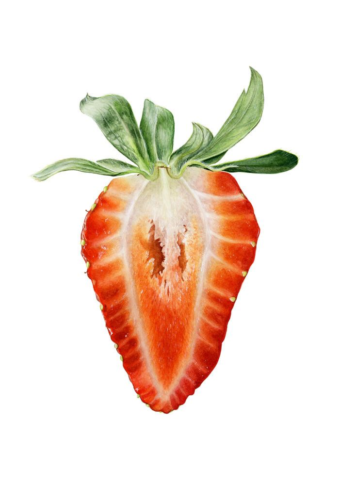 best 25 strawberry art ideas on pinterest strawberry
