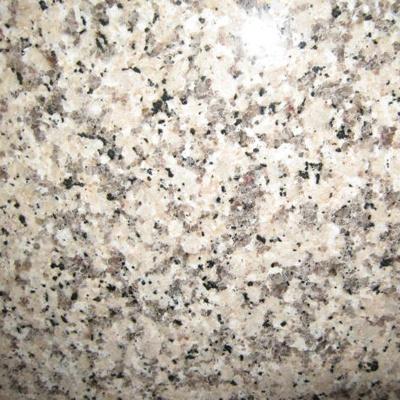 Crema Caramel Granite Kitchen Countertop Kitchen