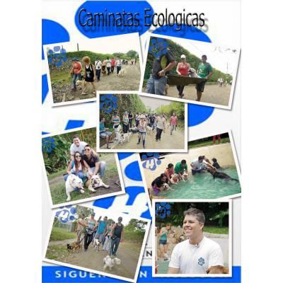 Kninos Educados Huellas http://cali.anunico.com.co/