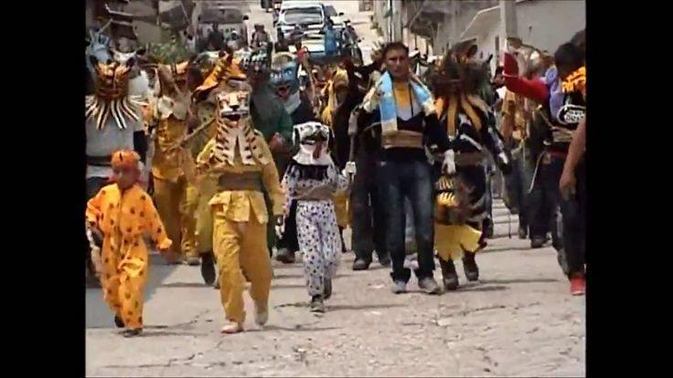 Peleas de Tigres en Zitlala  (a Puro Chingadazo I)