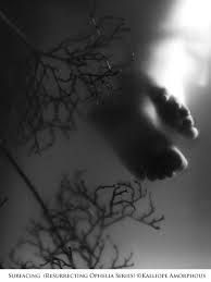 Image result for Kalliope Amorphous