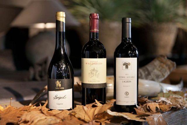 Un viaggio alla scoperta dei vini ed i vitigni più famosi d'Italia: sesta puntata. #vini #vitigni #lagrein