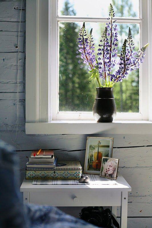 lupins on the windowsill.