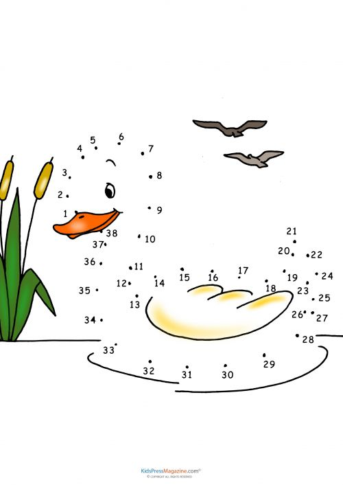 Verbinde die Punkte #ente Connect the dots – Duck #dottodot #brain #games #kindergarten #zählenlernen