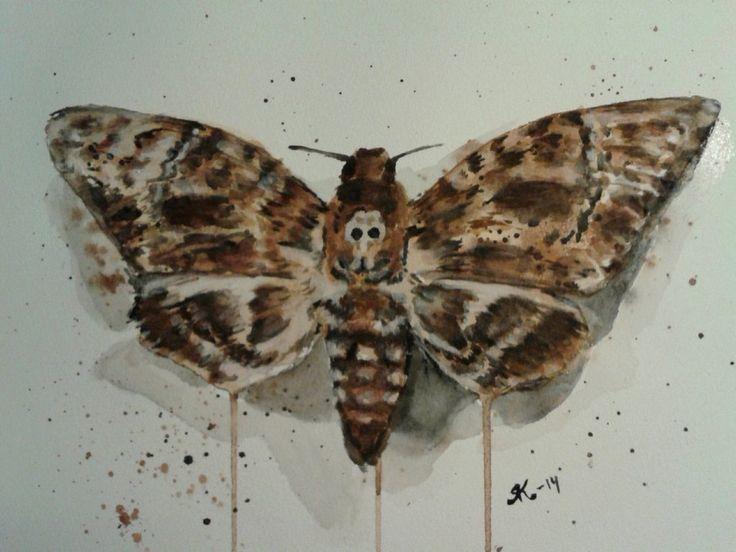 Moth by kiti83