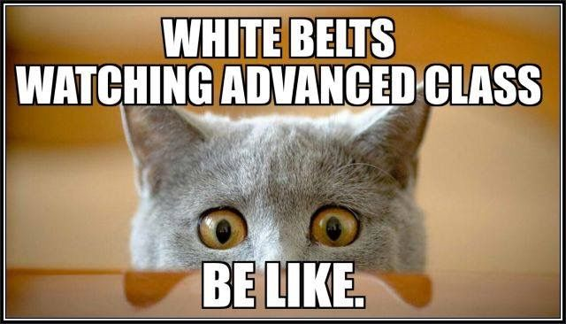I'm impressed. i love watching the black belts practice. it's inspiring. not just the cool stuff they do, but their attitudes while they do it.