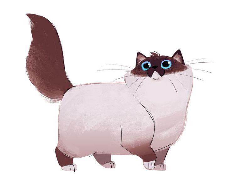картинки рисовать толстые коты