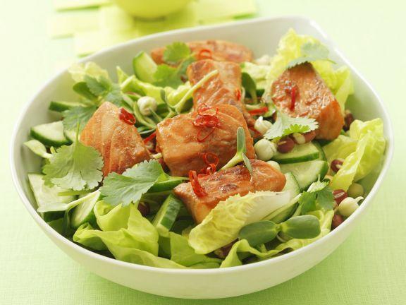 Marinierter Lachs auf Salat mit Gurke, Koriander und Chili ist ein Rezept mit frischen Zutaten aus der Kategorie Gemüsesalat. Probieren Sie dieses und weitere Rezepte von EAT SMARTER!