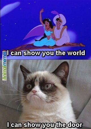 Cat memes I Can Show You The Door...