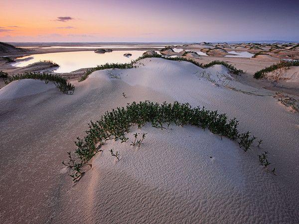 Duna de arena, isla Fraser