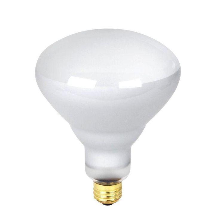 R40 Incandescent Light Bulbs