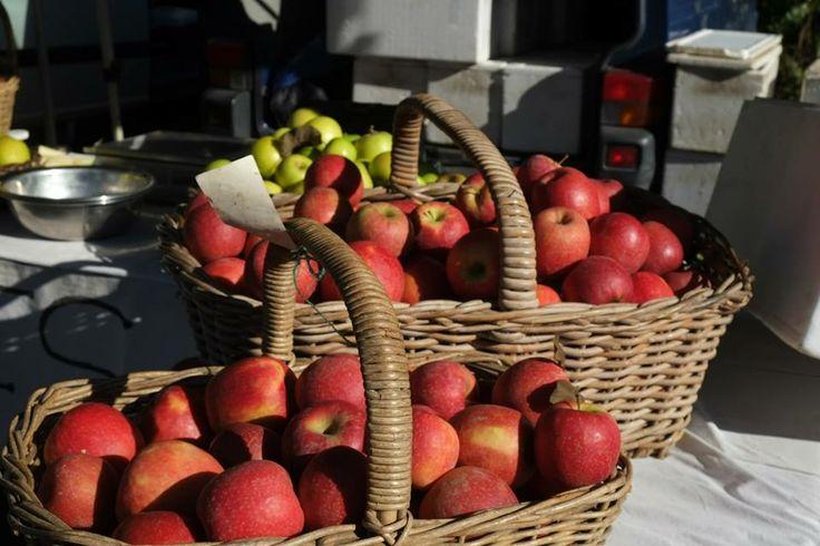 Farmers market Bangalow NSW