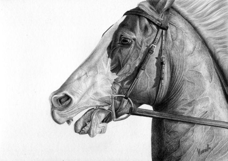 Zagoniony koń szarpany wędzidłem.