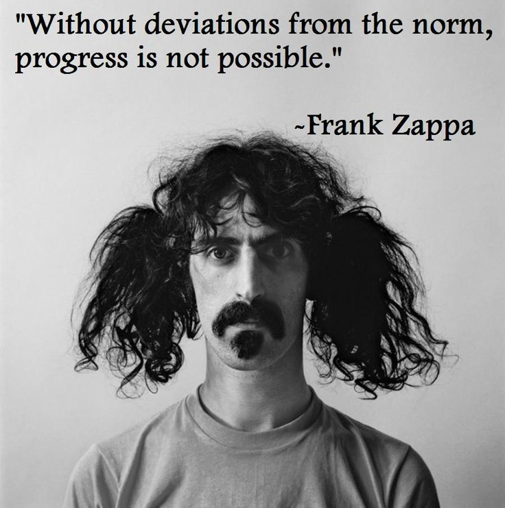 quote#: Frankzappa, Frank Zappa, Families Crests, Rocks Stars, The Angel, Music Quotes, Jerry Treasure Mountain, Inspiration Quotes, Pictures Quotes