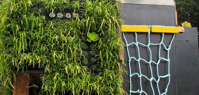 Off the wall: vertical gardening - Gardening - New Zealand Woman's Weekly