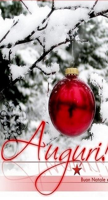 Auguri di Buon Natale a..TUTTI..