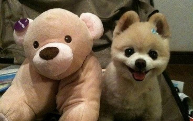 Smiles:)