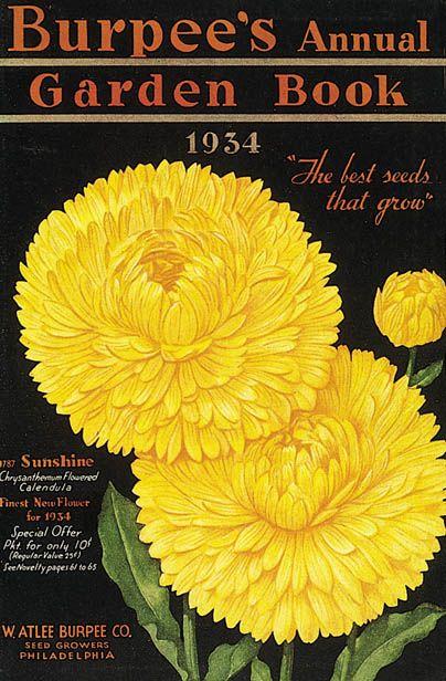 1934 Cover art for Burpee's Seed Catalog  .http://www.burpee.com/
