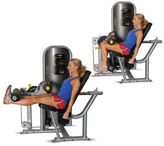 Gym Move - Seated Leg Extension Weight racks full? Not ...