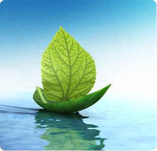 Naturopathy - Our Clinical Naturopaths design a tailor-made program to get you feeling your best...naturally