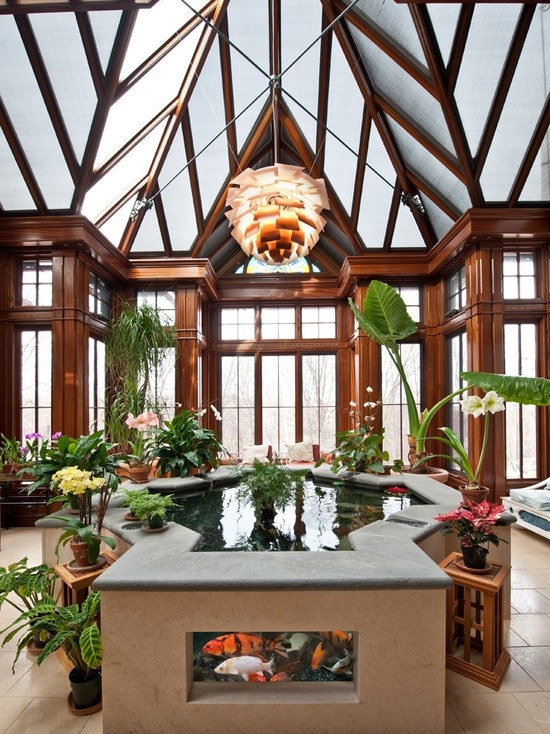 Friday - Indoor pond - very peaceful