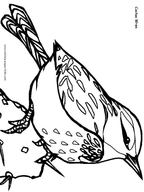 summer birds coloring pages - photo#27