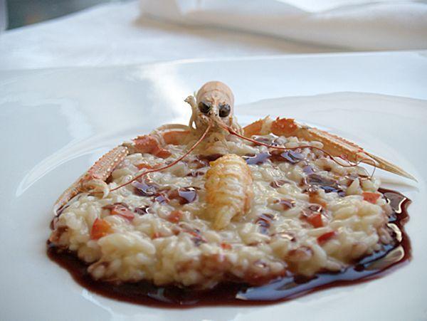 Ciao a tutti, oggi vi propongo un primodi pesce.  RISOTTO ALLA ZUCCA CON SCAMPI, PANCETTA E AMARONE https://www.facebook.com/pages/Chef-Fulvio-De-Santa/751516918234144