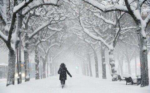 SNOW.....SNOW....