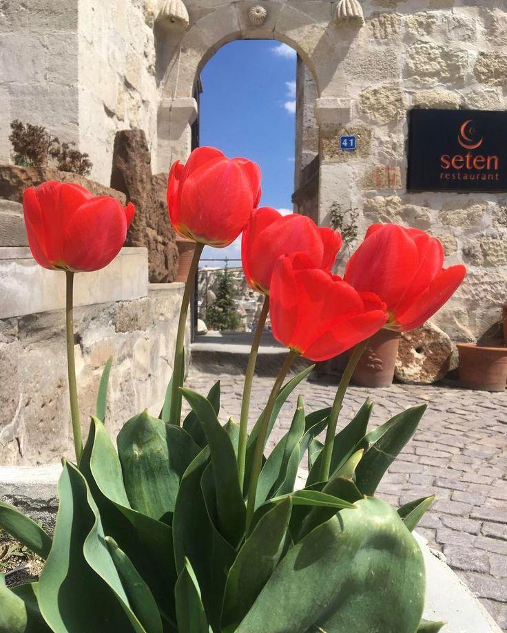 Top 10 Fine Dining Restaurants in Cappadocia �� @setenrestaurant .................... Location: ��  #cappadocia #kapadokya #goreme #turkey ��  ㅡㅡㅡㅡㅡㅡㅡㅡㅡㅡㅡㅡㅡㅡㅡㅡㅡㅡㅡ Picture by ��  @goreme_cappadocia ��  #capadocia  #bistro #gastronomi  #카파도키아 #travelblog #traveladdict #beautifuldestinations #capadócia #travelblogger #vscotravel  #turkishcuisine #lovefromturkey #foreveronvacation #restaurant #turquia #food #turkey_home  #wanderlust  #finedinig #Каппадокия #setenrestaurant #uchisar #kayseri…