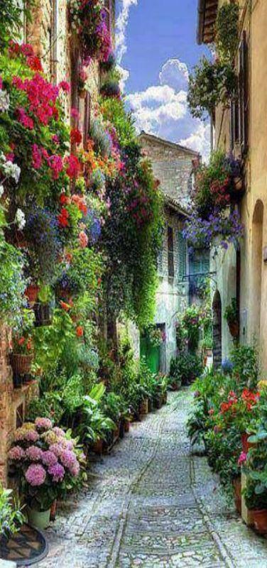 Spello, Liguria, Italy | by Burini Matteo www.doriedwards.nerium.com