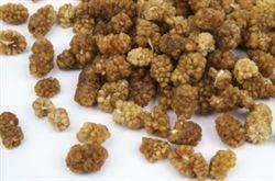 White Mulberries - Organic