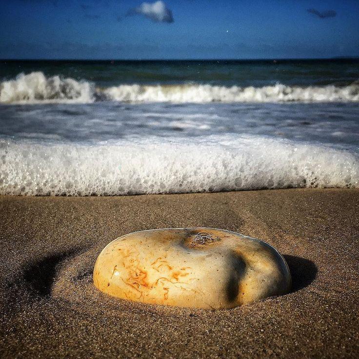 I'm not missing being at work. #pebble #beach #sand #seashore #waves #horizon #holiday #idyllic #peace #calm #iphone6s #beaniedee