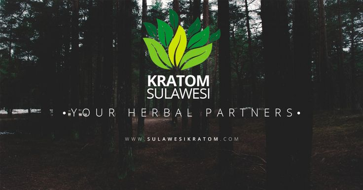 Sulawesi Kratom is Company based on Pontianak We manufacture, trade and export Kratom Powder, Sulawesi Kratom has provided the quality and selection