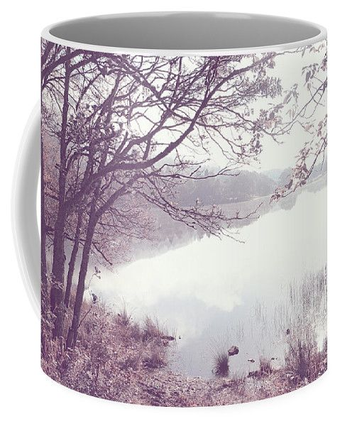 Jenny Rainbow Fine Art Photography Coffee Mug featuring the photograph Natural Mirror With Natural Frame by Jenny Rainbow
