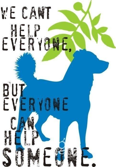 Mixed Breed Dog Art Print Wall Decor Inspirational Series.