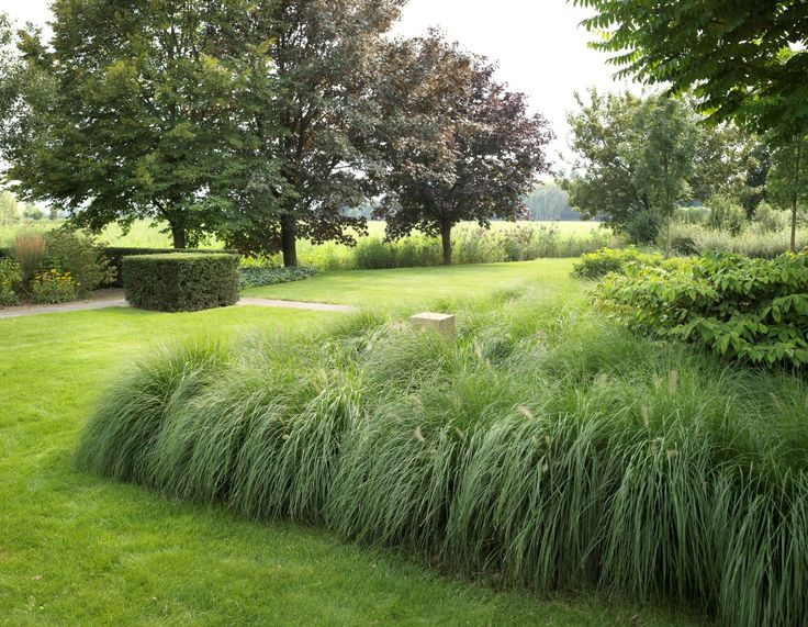 www.hendrikshoveniers.nl. Tophovenier, moderne tuin, exclusieve tuin, strakke tuin, kleine tuin, landelijke tuin, tuinarchitectuur, tuinarchitect,tuin aanleg, tuin renovatie, hovenier