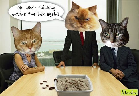 Boss Day Cats