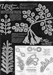 Мобильный LiveInternet «Ирландские кружева. Цветы и листья» | galisk108 - Дневник galisk108 |