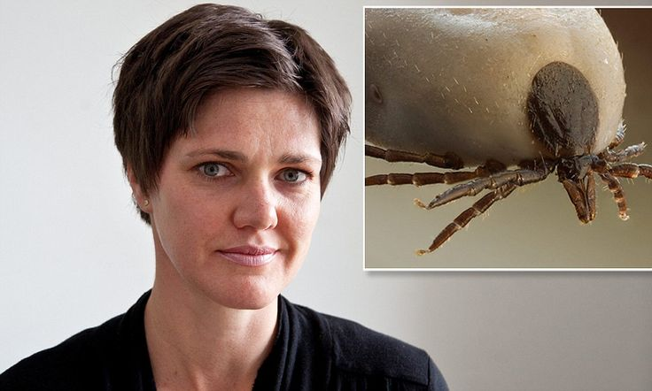 After years of expensive drug therapy and injections for MS, a simple course of antibiotics has cleared Julia Marshall-Wessendorf, 37, from Bath, of all her symptoms. She believes she was suffering from Lyme disease.