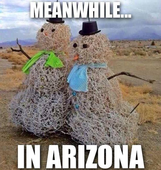 650 Best Arizona Images On Pinterest Arizona Christmas