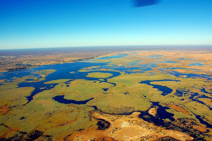 BOTSWANA BUDGET SCHEDULED SAFARIS OUR TIPS:  We would suggest adding a 3 day Chobe safari when doing this safari from Maun. (360$)     We would suggest adding a 3 day Okavango Delta Safari when travelling from Kasane. (500$)    DESCRIPTION:  These Botswana camping safaris start in Maun and end in Kasane, They are conducted as none participating safaris. This means it's fully serviced. You will love the wildlife while on your game drives in Moremi Game Reserve and Savuti