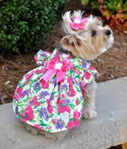 Garden Party Chic.....totally a girlie girl, this just says love me.....:-))