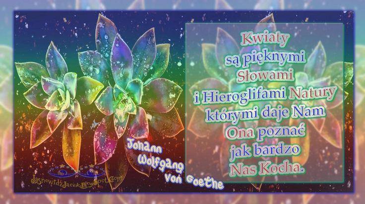 Kwiaty Słowami Natury - Johann Wolfgang von Goethe  www.JasnowidzJacek.blogspot.com