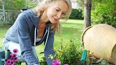 Ako účinne zatočiť s burinou v záhrade? Zmiešajte 3 domáce suroviny a tá pliaga nebude mať šancu | Casprezeny.sk