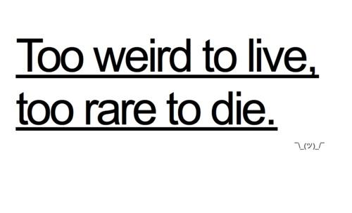 Too weird to live, too rare to die | Toooo me | Pinterest