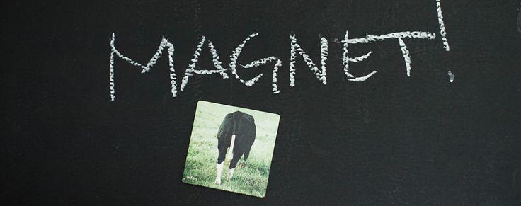 Magnete zum Pinnen
