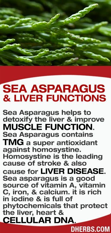 Sea #Asparagus #benefits. Learn to love nutrition and be healthy at drmalikov.com via dherbs.com
