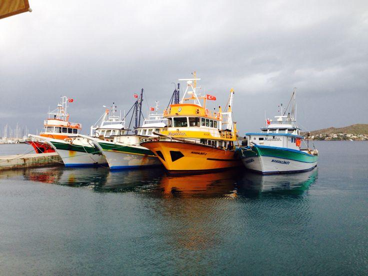 Balıkçı tekneleri Yalıkavak Türkiye, foto by Tuncer Ertem